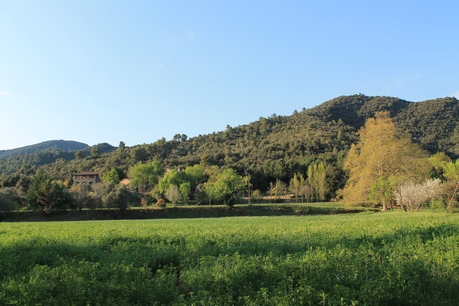 STROLLS AND OUTINGS AROUND THE VALL DEL LLÉMENA