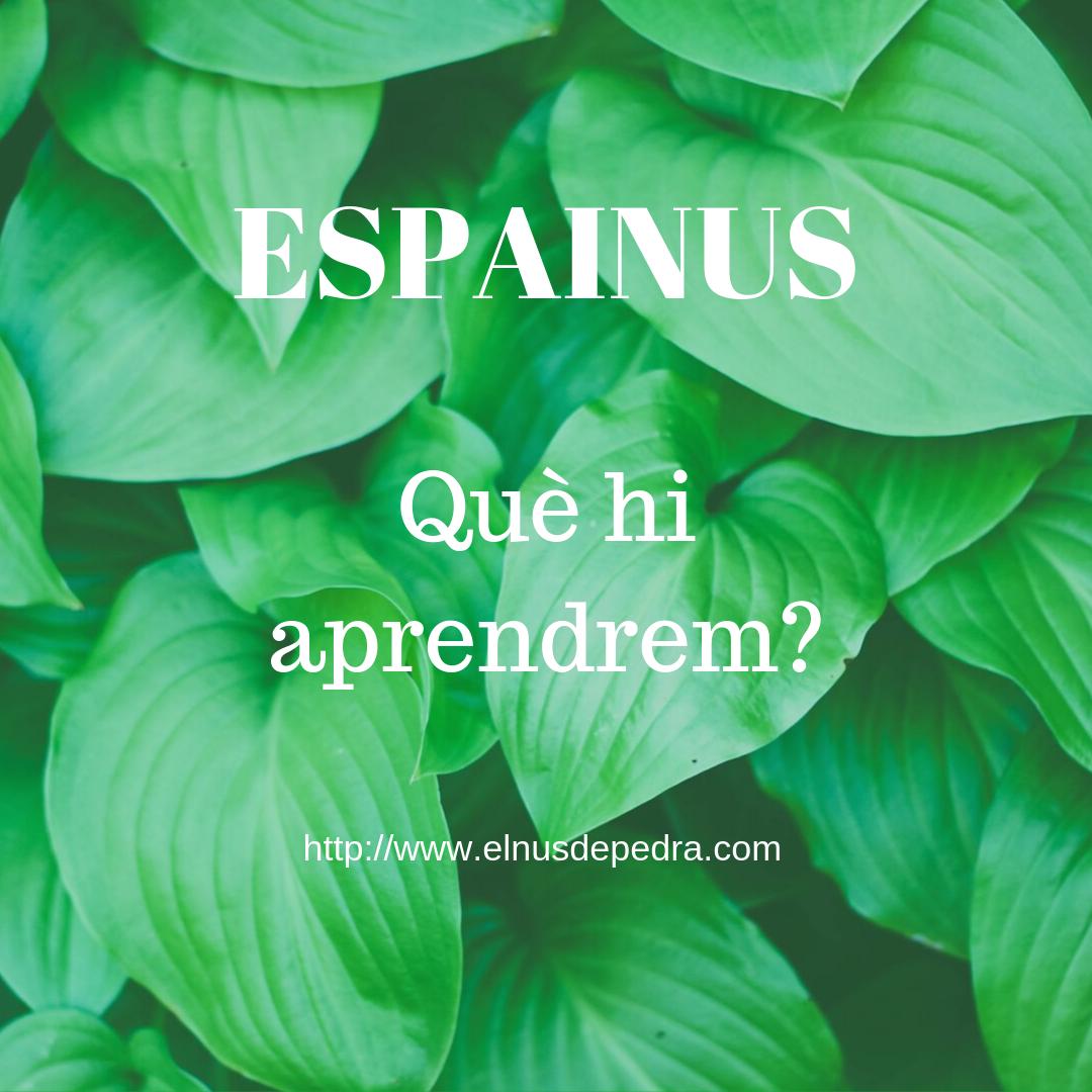 ESPAINUS